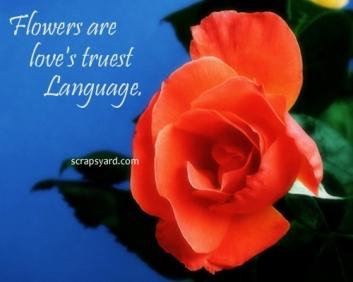 flowerslove.jpg